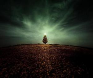 Puzle Árvore de Natal no Campo