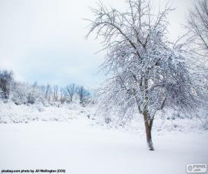 Puzle Árvore de neve