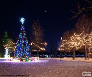 Puzle Árvores iluminadas, Natal