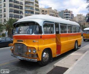 Puzle Ônibus de Malta