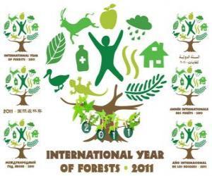 Puzle 2011 Ano Internacional das Florestas
