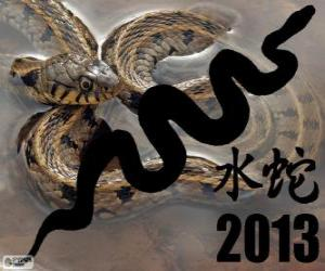 Puzle 2013, ano da Cobra de Água. De acordo com o calendário chinês, desde o 10 de fevereiro de 2013 para o 30 de janeiro de 2014