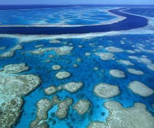 Puzle A Grande Barreira de Corais, recifes de coral em todo o mundo maior. Austrália.