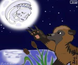 Puzle A lua e o urso