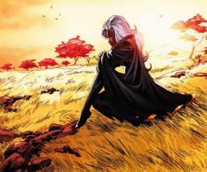Puzle A super-heroína Tempestade é um membro dos X-Men, também conhecido como a Pantera Negra