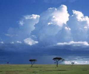 Puzle Africano savana
