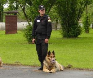 Puzle Agente da polícia com o seu cão policial