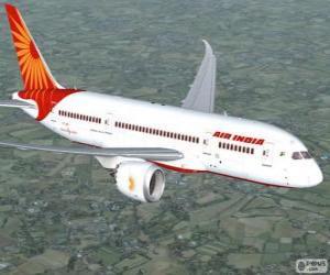 Puzle Air India é a principal companhia aérea da Índia