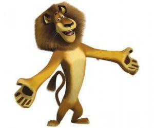 Puzle Alex, o leão do zoológico de Central Park, em Nova Iorque, com os braços abertos