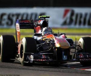 Puzle Alguersuari - Toro Rosso - Suzuka 2010