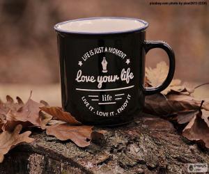 Puzle Ame sua vida