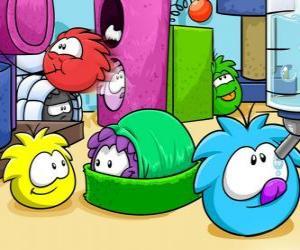Puzle Animais de estimação no Club Penguin Puffles