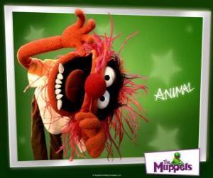 Puzle Animal, o louco baterista da banda do Muppet Show é um homem primitivo