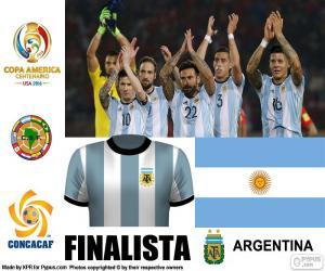 Puzle ARG finalista Copa América 2016