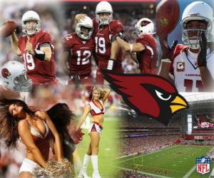 Puzle Arizona Cardinals