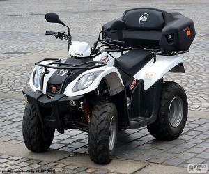 Puzle ATV ou quadriciclo