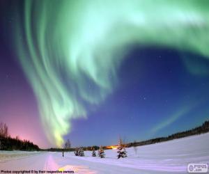 Puzle Aurora polar