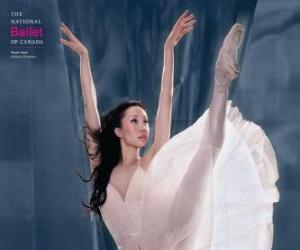 Puzle Bailado - Dançarina em ação
