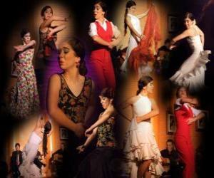 Puzle Bailarina. Flamenco tem suas origens no folclore do povo cigano e da cultura popular da Andaluzia, Espanha