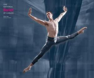 Puzle Balé, ballet ou balê - Dançarin em ação
