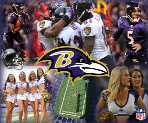 Puzle Baltimore Ravens