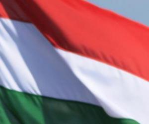 Puzle Bandeira da Hungria