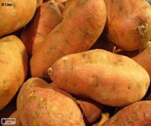 Puzle Batata-doce, também chamada batata-da-terra, batata-da-ilha, jatica e jetica