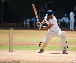 Puzle Batedor críquete
