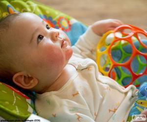 Puzle Bebê olhando
