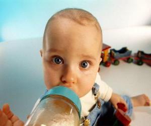 Puzle Bebê que toma ou biberão