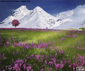 Puzle Belas paisagens dos Alpes