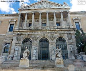 Puzle Biblioteca Nacional de Espanha, Madrid