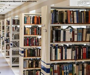 Puzle Biblioteca