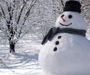 Puzle Boneco de neve com gorro e cachecol