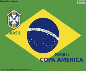 Puzle Brasil, campeão Copa América 2019