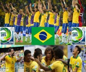 Puzle Brasil Copa das Confederações de 2013