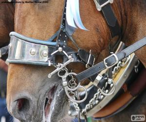 Puzle Breios do cavalo