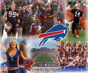 Puzle Buffalo Bills