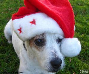 Puzle Cão do Natal