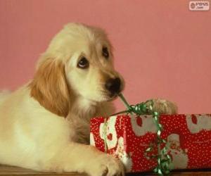 Puzle Cachorro brincando com uma fita de um presente