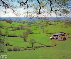 Puzle Campo de Devon, Grã-Bretanha