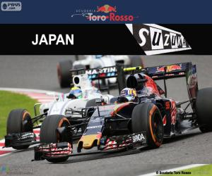 Puzle Carlos Sainz Jr, GP do Japão 2016