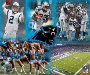 Puzle Carolina Panthers