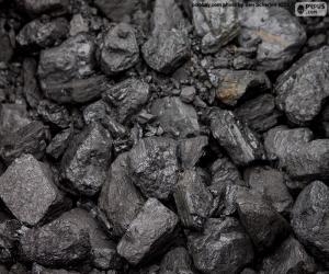 Puzle Carvão