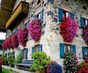 Puzle Casa na primavera com flores na janelas