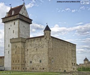 Puzle Castelo de Hermann, Estónia