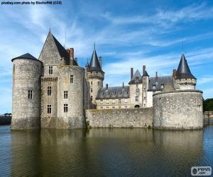 Puzle Castelo de Sully-sur-Loire, França