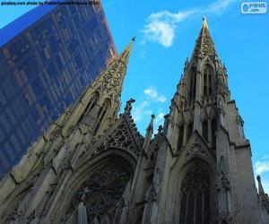 Puzle Catedral de São Patrício, Nova Iorque