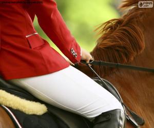 Puzle Cavalo e cavaleiro