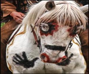 Puzle Cavalo índio